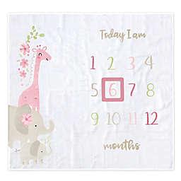 Gerber® 2-Piece Safari Cotton Muslin Milestone Blanket Set in Pink
