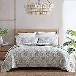 Tommy Bahama® Maui Palm Quilt Set in Sage Green