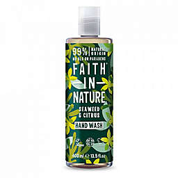 Faith in Nature 13.5 fl. oz. Detoxifying Hand Wash in Seawead and Citrus