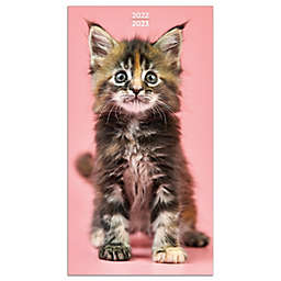 TF Publishing 2022-2023 Kittens 2-Year Small Monthly Planner