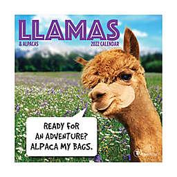 TF Publishing Llamas & Alpacas 2022 Mini Calendar