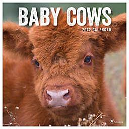 TF Publishing 2022 Baby Cows Wall Calendar