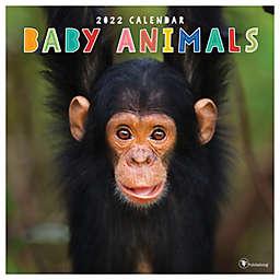 TF Publishing 2022 Baby Animals Wall Calendar