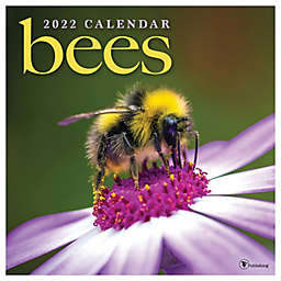 TF Publishing Bees 2022 Monthly Wall Calendar
