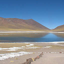 Atacama Altiplanic Lagoons & Salt Flat Tour in Chile by Spur Experiences®