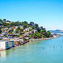 San Francisco Redwoods, Coast, and Sausalito Tour by Spur Experiences®
