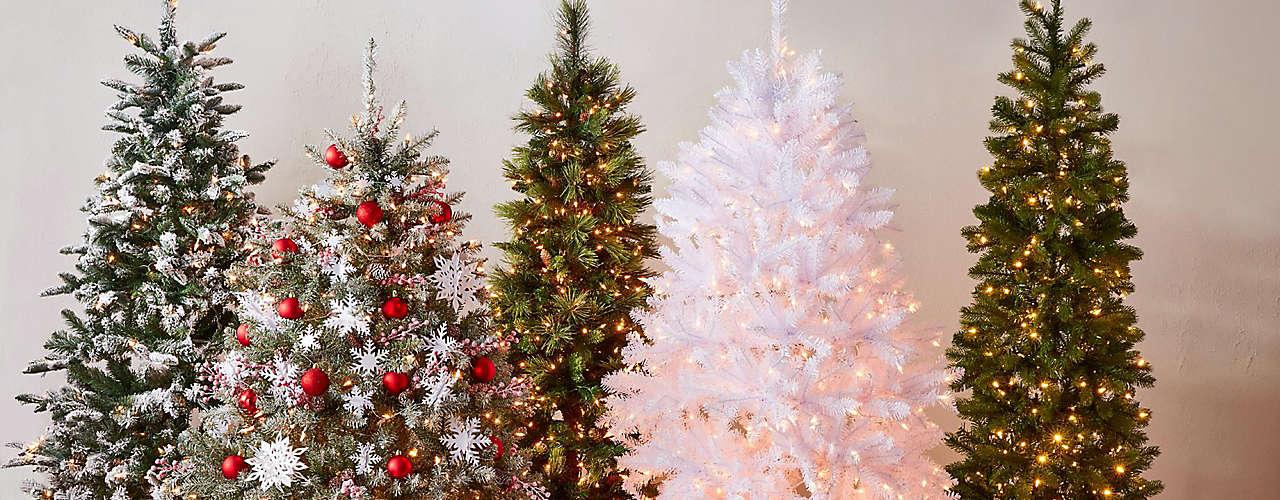 let's trim that tree!