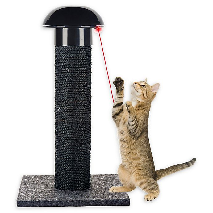 Alternate image 1 for CatLife Scratching Post and Laser Toy