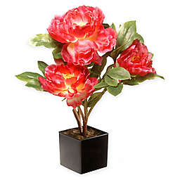 National Tree Company® 15-Inch Peony Artificial Flower with Ceramic Pot in Fuchsia