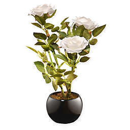 National Tree Company® 9.5-Inch Rose Artificial Flower with Ceramic Pot in White