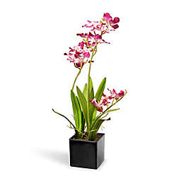 National Tree Company® Artificial Purple Orchids in Pot