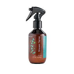 SpaRoom® 6 oz. Eucalyptus Mint Shower Spray