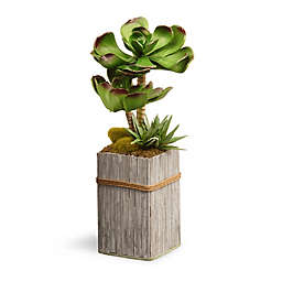 """National Tree Company® 11"""" Artificial Garden Accents Succulent Plant in Wood Planter"""