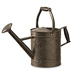 National Tree Company® Garden Accents Antique Watering Can in Black