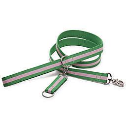 Harry Barker® Eton 6-Foot Dog Leash in Pink/Green