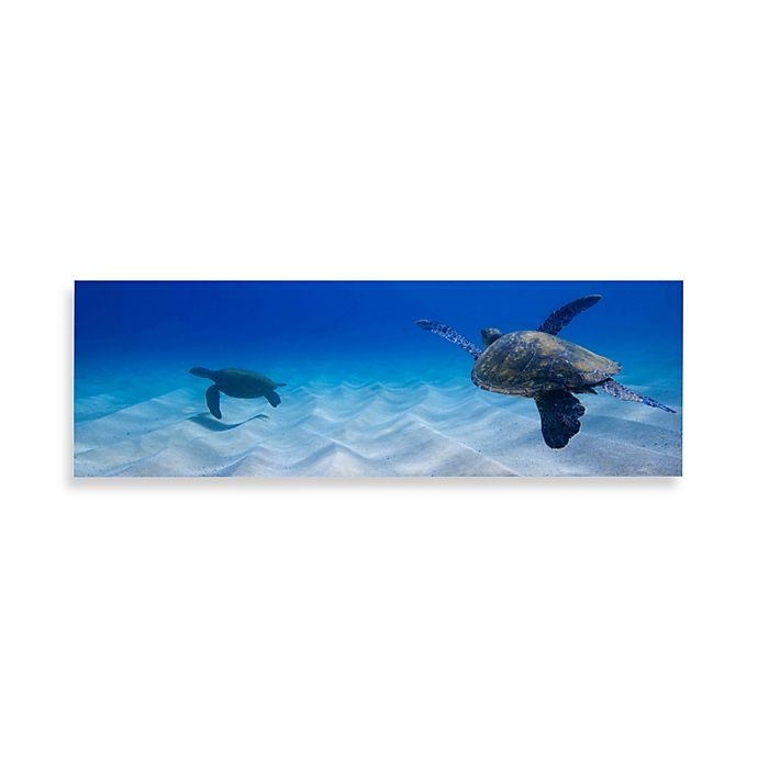 Two Turtles Canvas Print 58 Inch X 18 Inch Wall Art Bed