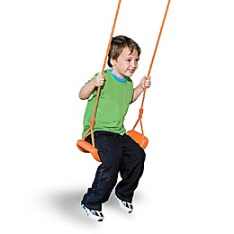 Pure Fun Toddler Swing Seat