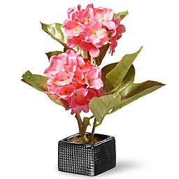 National Tree Company 10-Inch Artifical Hydrangea in Pink with Ceramic Vase