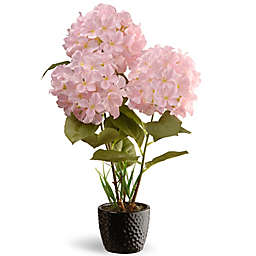 National Tree Company 20-Inch Artifical Hydrangea in Pink with Ceramic Vase
