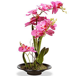 National Tree Company 17-Inch Artificial Orchid Arrangement in Pink with Black Planter