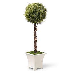 National Tree Company® 30-Inch Single Ball Topiary Artificial Tree