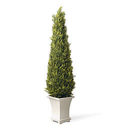 National Tree Company® 42-Inch Artificial Upright Juniper Tree with Wood Base