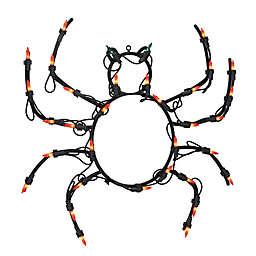 15-Inch Pre-Lit Spider Halloween Decoration