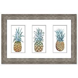 Pinapple Triptych 25-Inch x 17-Inch Canvas Wall Art