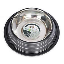 Iconic Pet Color Splash Stripe Non-Skid Pet Bowl Collection