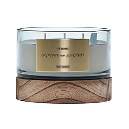 DW Home Bamboo and Jasmine Wood-Accent 17 oz. 3-Wick Jar Candle in Green