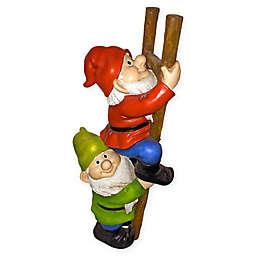 Design Toscano Up the Ladder Climbing Garden Gnome Statue
