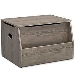 Delta Children Nolan Toy Box