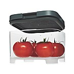 Rubbermaid® Freshworks™ Countertop Medium Produce Container with Lid in Grey/Clear