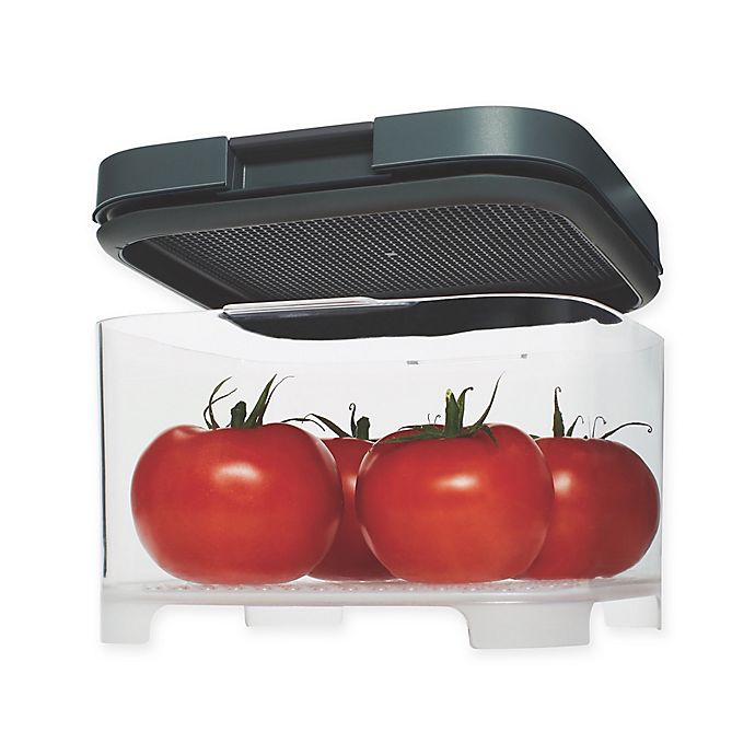 Alternate image 1 for Rubbermaid® Freshworks™ Countertop Medium Produce Container with Lid in Grey/Clear