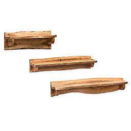 Alterre Furniture™ Alpine Live Natual Wood/metal Art Ledge in Natural