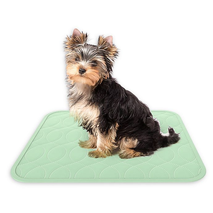 Alternate image 1 for Petmaker 2-Pack Puppy Training Reusable Pads