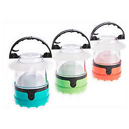 Dorcy Battery-Operated LED Mini Lantern (3-Pack)