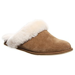 Bearpaw Ladon Women's Clog Slipper