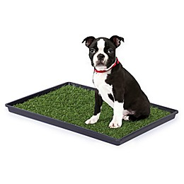 Prevue Pet Products Tinkle Turf System for Dogs