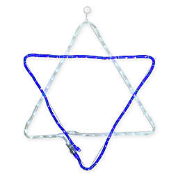 Vickerman 36-Inch Rope Light LED Star of David Hanukkah Decoration in Blue/White