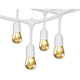 Fiet Electric 10-Count Incandescent String Lights