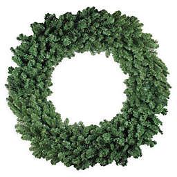 Northlight 60-Inch Colorado Pine Wreath