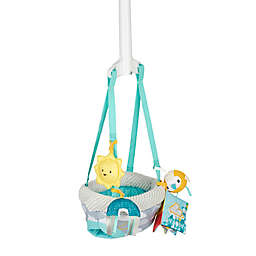 Evenflo® ExerSaucer® Sweet Skies Doorway Jumper with Removable Toys
