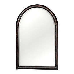 Uttermost Rada Arched 46-Inch x 30-Inch Wall Mirror in Aged Bronze