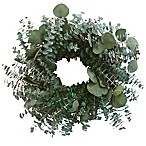 Bee & Willow™ Home 20-Inch Dried Eucalyptus Wreath
