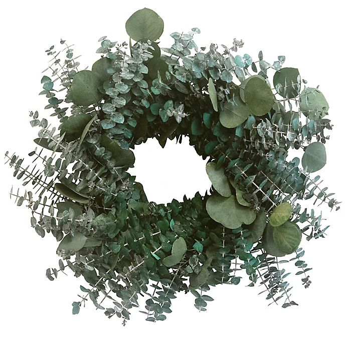 Alternate image 1 for Bee & Willow™ Home 20-Inch Dried Eucalyptus Wreath