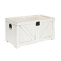 Kate and Laurel Cates Storage Chest in White