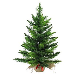 Northlight 2-Foot Mini Balsam Pine Christmas Tree with Burlap Base