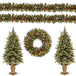 National Tree Company® Frosted Berry Assorted Artificial Holiday Decor (Set of 5)