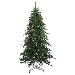 Northlight Pre-Lit Eden Fir Christmas Tree